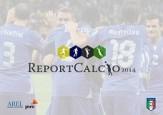 report calcio 2014